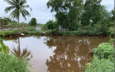 Vietnam: Cleaning Mekong River Water for Children